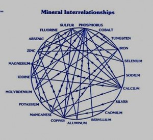 CHART-mineral interrelationships